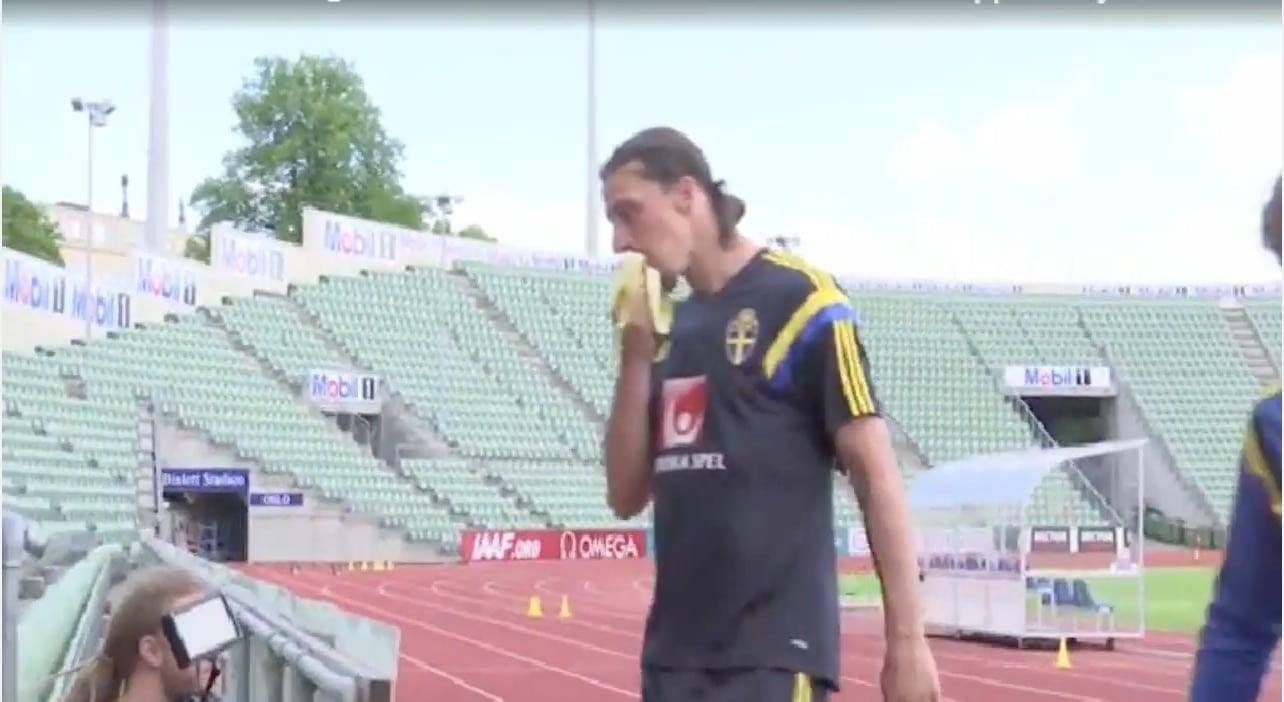 Pallomeri.net, Zlatan Ibrahimovic