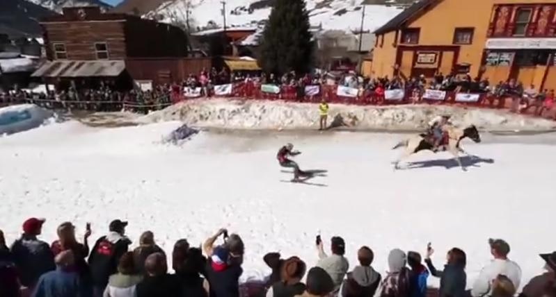 skijoring pallomeri.net