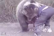 Klassikkovideo: 9-vuotias Khabib Nurmagomedov paini karhun kanssa