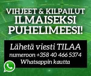 Whatsapp vihjeet