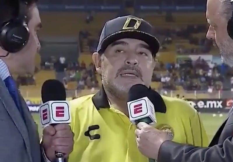 diego maradona pallomeri.net