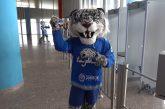 KHL:n varjoplayoffeissa paljastui huijaus - liiga joutui rankaisemaan Barys Nur-Sultania