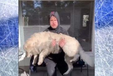 Video: Hätä keksii keinot - Mikko Rantanen tekee koiransa kanssa kovaa karanteenitreeniä