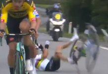Julian Alaphilippe Tour of Flanders / Pallomeri.net