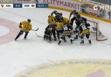 kalpa-kärpät / Pallomeri.net