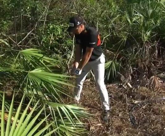 Viktor Hovland PGA Tour golf - pallomeri.net