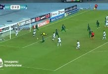 Botafogo / Pallomeri.net
