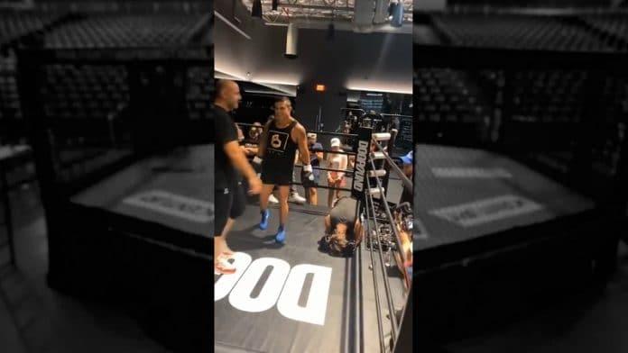 Vitor Belfort vs tubettaja Bryce Hall / Pallomeri.net
