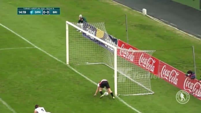 Deportivo Maldonadon Tomas Conechny / Pallomeri.net